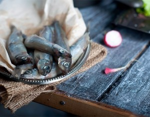 Consigli per la conservazione del pesce