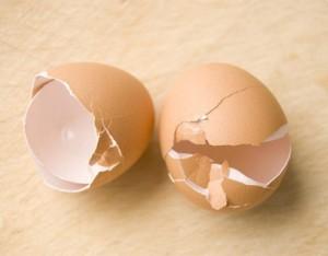 I gusci delle uova...