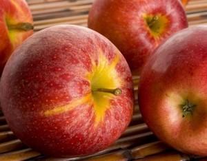 Le varietà di mela più note