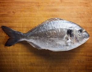 Mangi pesce? Vai bene a scuola!