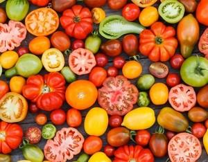 Le 5 varietà di pomodori più note