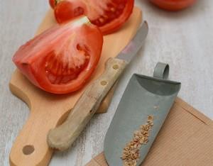 Come raccogliere i semi del pomodoro