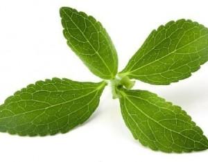 La vita è più dolce con stevia