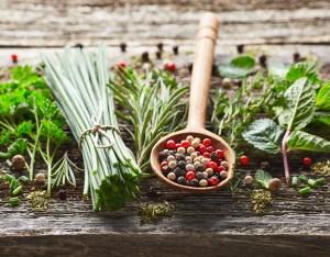 Spezie ed erbe aromatiche: gli abbinamenti con le verdure