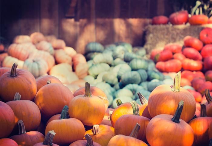 La lista della spesa in autunno
