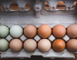 Piacere, uovo: come riconoscere cosa mangi