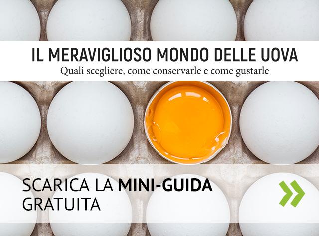 Scarica la mini-guida sulle uova