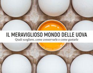 Mini-guida: il meraviglioso mondo delle uova
