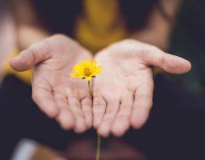 Il potere del perdono