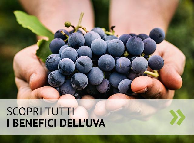 Perché mangiare l'uva fa bene